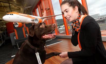 easyJet forms pet-sitting partnership with TrustedHousesitters