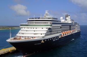 Nine killed on Holland America Line sightseeing flight