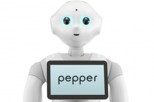 Pepper joins the crew at Costa Group