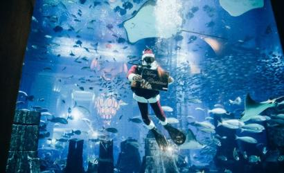 Celebrate Christmas with Frozen Edition at Atlantis, the Palm