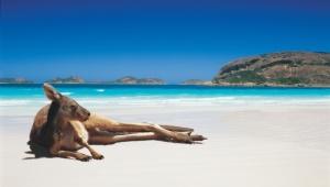Top ten Australian beaches