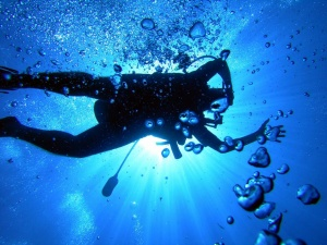 Jump in and discover diving with 'Into the Blue 2013' from PADI