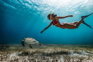 5 of the most incredible snorkeling spots in the world