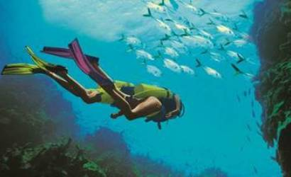 Beaches Resorts makes play for Caribbean diving holidays