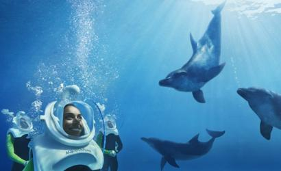 Aquaventure Waterpark welcomes new dolphin experiences