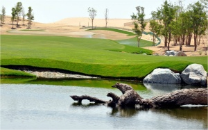 Dubai Tiger Woods golf course on schedule