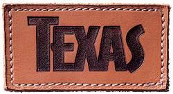 Texas_logo-250x137.jpg