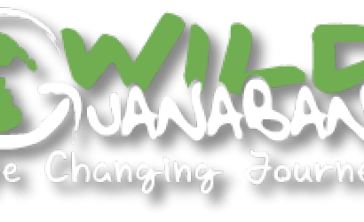 Travel company Wild Guanabana launches in GCC