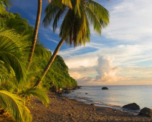 Discover Dominica - News from the Nature Island