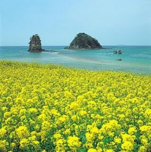 Jeju Island In Korea Prime Contender For New Seven Wonders