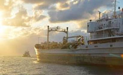 Greater Fort Lauderdale welcomes latest diving wreck