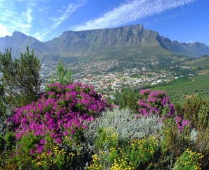 Good value packages drive more tourism for loeries and creative month in Cape Town