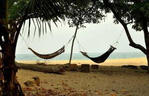 Tribewanted back on Sierra Leonean beach
