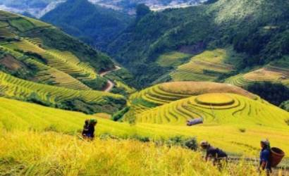 Vietman launches National Tourism Year 2011