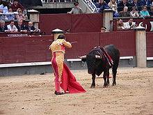 Spanish move to 'protect' bullfighting is disastrous for tourism industry