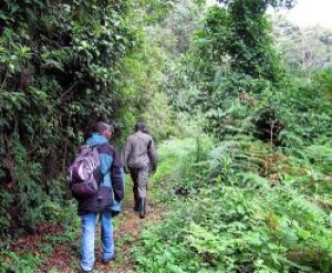RDB to launch new tourism product: the Congo Nile Trail