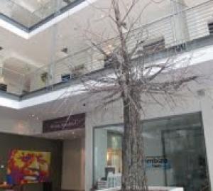 Baobab wire-tree takes root at Mandela Rhodes Place Hotel and Spa