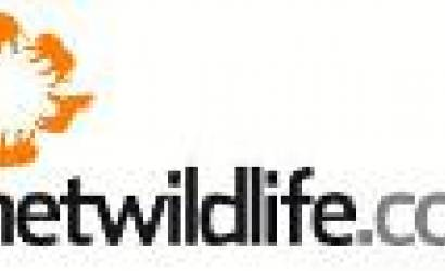 Planetwildlife launches China website