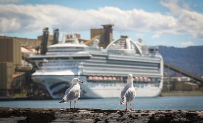 Police board Ruby Princess in Australia to interview crew