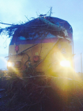 Storm conditions to affect some West of Scotland rail services