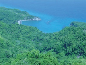 Bamboo Eco Resort & Spa in Jamaica signs Heads of Terms Agreement with Six Senses