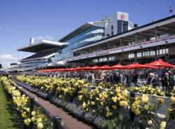 Victoria Racing Club outlines Flemington improvements ahead of Melbourne Cup Carnival