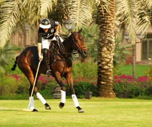 Emirates Palace to host Polo at the Palace