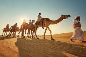 Guest arrivals to Abu Dhabi continue to increase