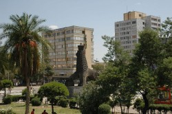 AHIF places spotlight on hotel shortages in Addis Ababa, Ethiopia