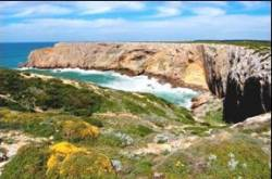 Algarve Bird Watching Festival set for October launch