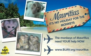 BUAV launch tourism awareness campaign