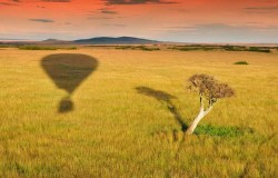 Yellow Zebra Safaris takes on UK PR as growth continues