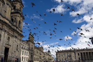 Bogotá puts final touches to World Travel Awards Gala Ceremony preparations