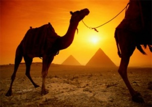 UNWTO bets on Egyptian tourism recovery