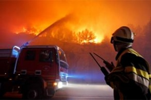 "French forest fire ""under control"""