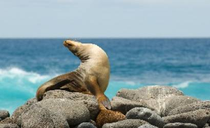 On The Go Tours launches cruises to the Galapagos Islands