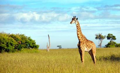Joint visa for East African tourists