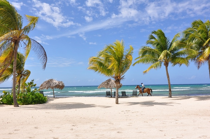 Jamaica ministry of tourism suspends March events