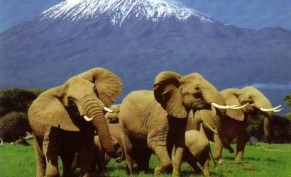 Kenya Ministry of Tourism seeks to dampen concerns