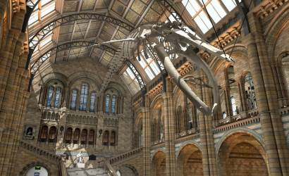 Natural History Museum reopens Hintze Hall as transformation continues
