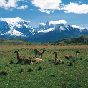 Financial turmoil hits tourism sector in Argentina