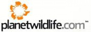 PlanetWildlife launches free Global Safari and Wildlife Brochure