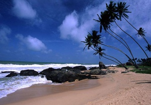 Sri Lanka's tourism economy enjoys unprecedented boom