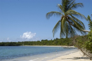 Trinidad & Tobago set for CTO Sustainable Tourism Development conference