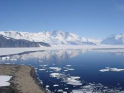 Antarctica tourism continues to slide