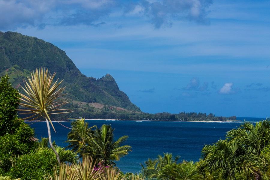 Tatum to lead Hawai'i Tourism Authority | News | Breaking